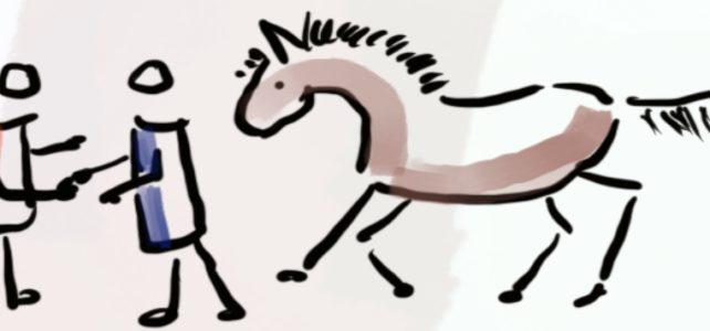 Der Ablauf eines Coachings mit dem Pferd