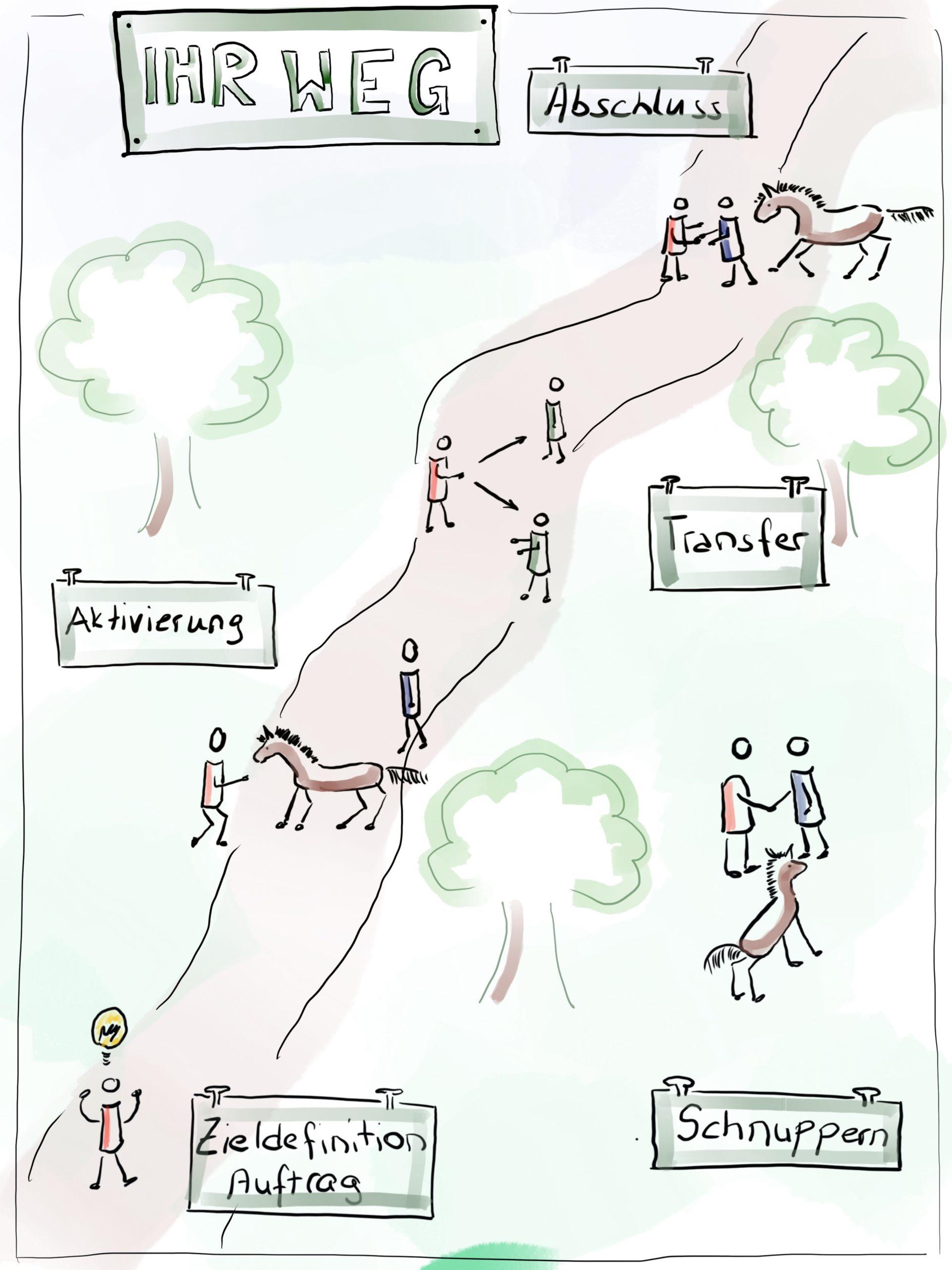Ablauf eines pferdegestützten Coaching