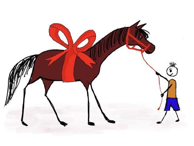 Die Erfahrung, die ein Kind / Jugendlicher mit einem Pferd machen darf, ist eine Bereicherung in jeglicher Hinsicht.