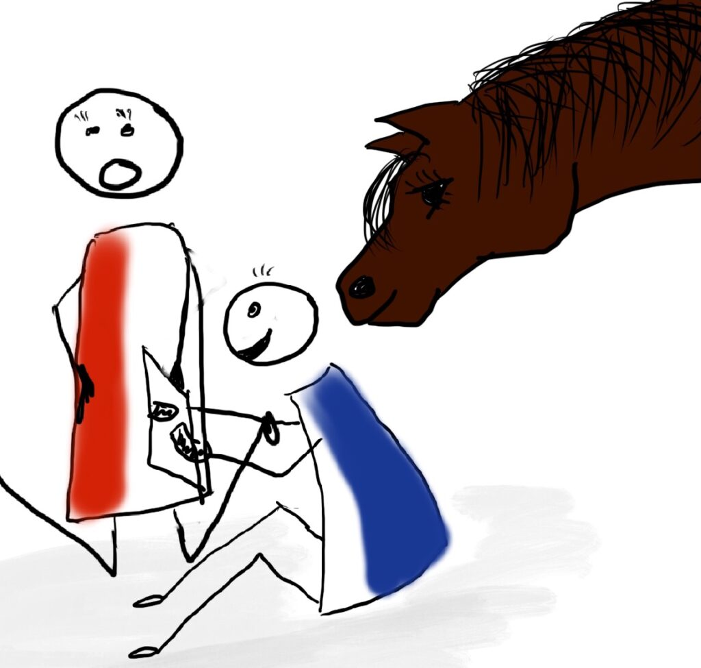 Lerncoaching mit Pferd